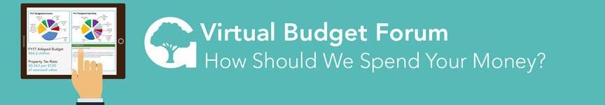 Virtual Budget Forum