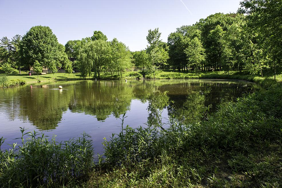 Parks Amp Fields Gaithersburg Md