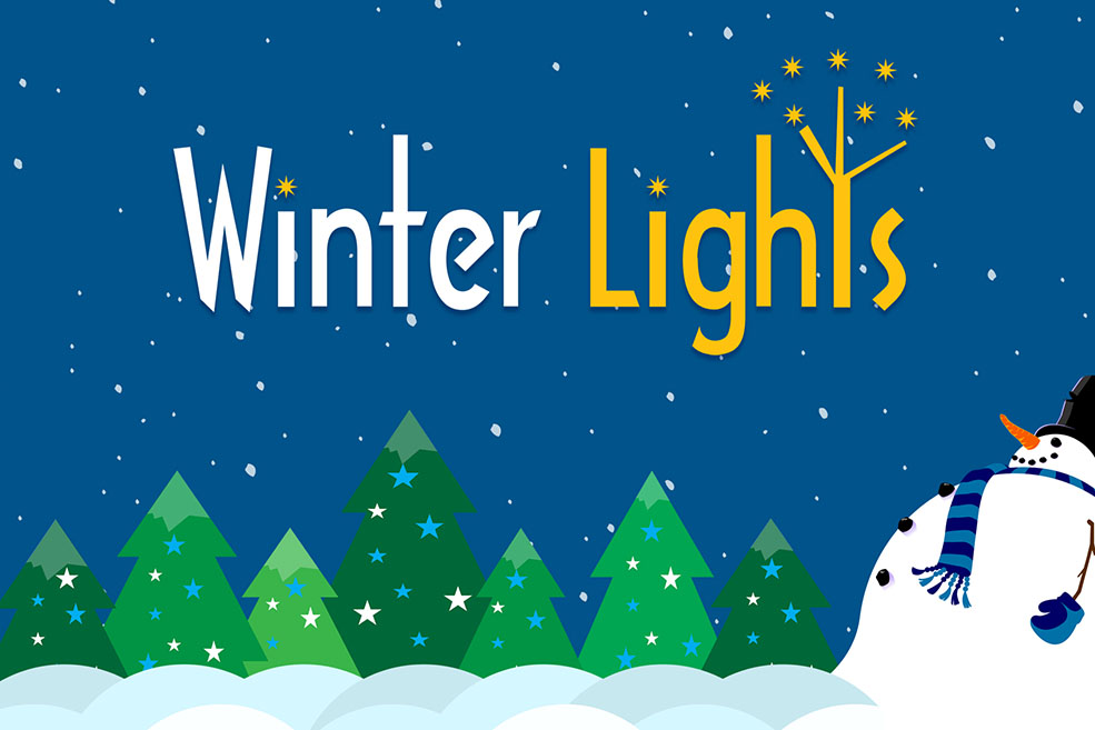 Winter Lights Festival Benefits Local Nonprofit Organizations